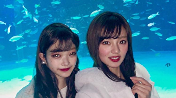 【インスタ映え間違いなし!】学割キャンペーン中のサンシャイン水族館の魅力を徹底リサーチ!
